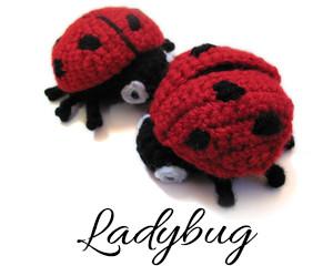 LadybugPV2
