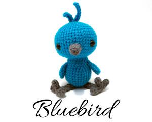 WoodlandBluebirdPV1